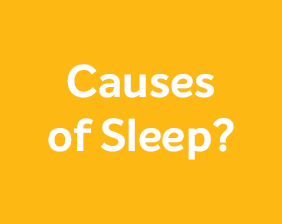 What are the causes of sleep apnea?
